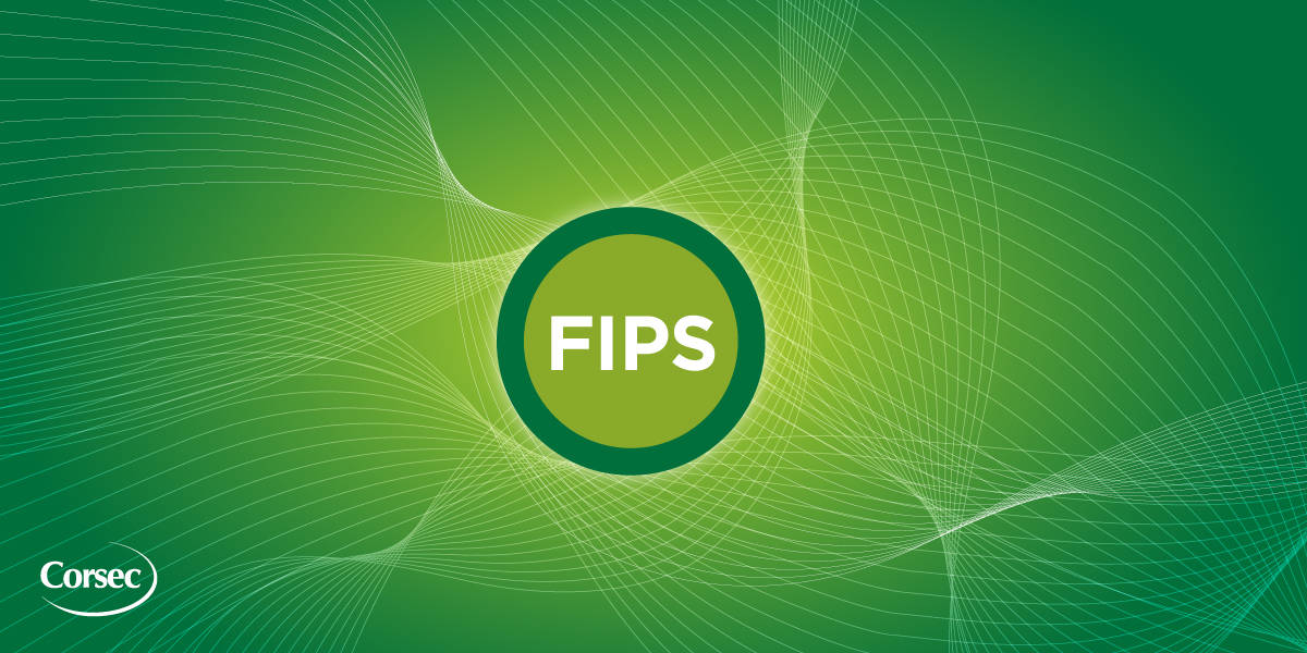 Corsec-FIPS-140-2 & FIPS-140-3