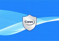 CORSEC CELEBRATES 20 YEARS OF SECURING PRODUCTS